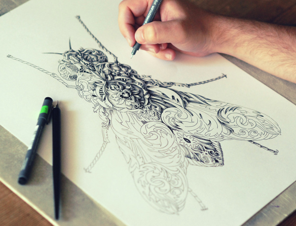 Alex-Konahin_little-wings_03